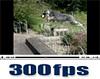 300fpsムービー(1)