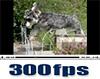 300fpsムービー(2)